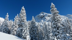 neige-alpes-ski-sejours-groupe
